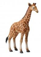 COLLECTA Tinklinės žirafos jauniklis (L) 88535