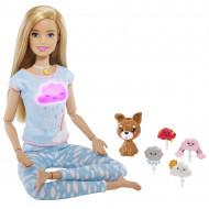 BARBIE Meditacijos rinkinys, GNK01