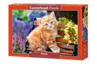CASTORLAND dėlionė Gelsvas kačiukas, 500d., B-52240 B-52240