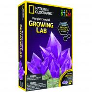 NATIONAL GEOGRAPHIC rinkinys Crystal Grow Purple, NGPCRYSTAL NGPCRYSTAL