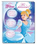 Knyga Pelenė. Aš - princesė! Princess, 1310-60 1310-60